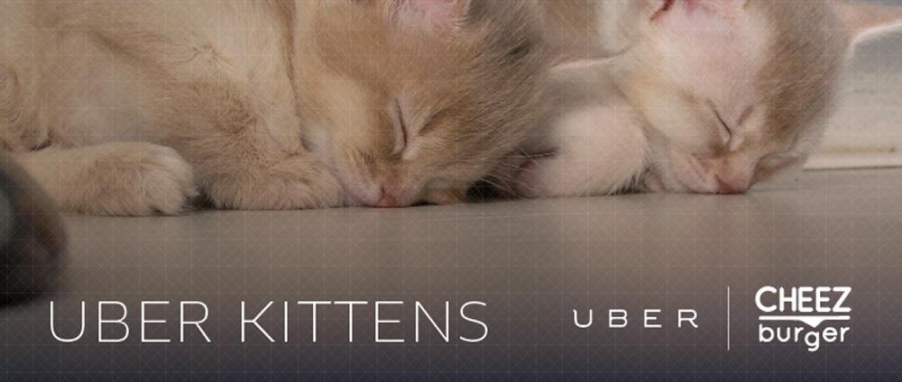 UberKittens.jpg